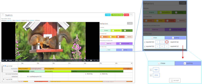 squirrels_interaction_modifiers.jpg