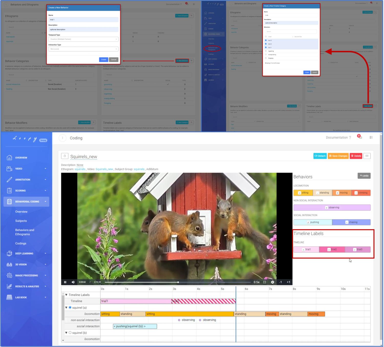 timeline_labels.jpg
